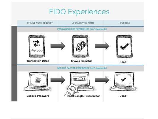 FIDO Experiences