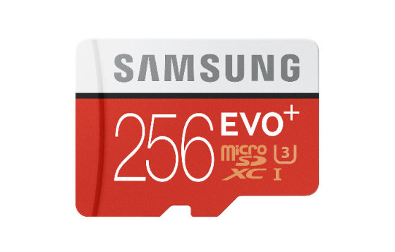 EVO Plus 256 GB