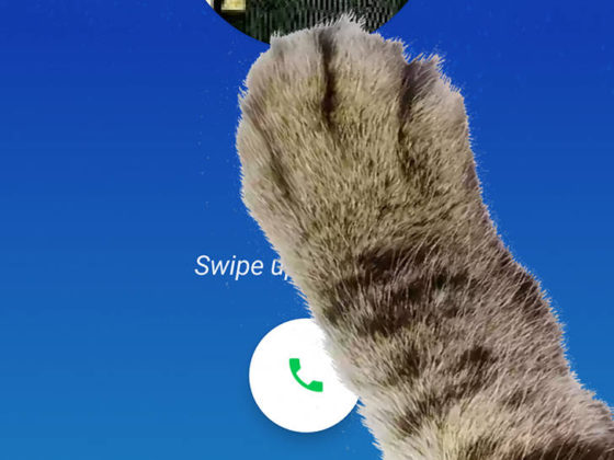 Telefon Google 9.0 easter egg tryb łapy paw mode