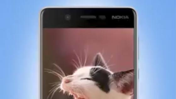 Nokia 8 Dzień Kota