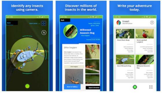 insect identifier najlepsze aplikacje październik 2018 android