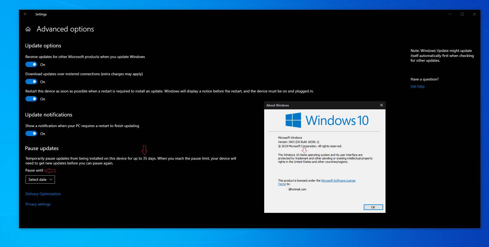 Windows 10 1903 Home opóźnianie aktualizacji z Windows Update pauzowanie kiedy premiera