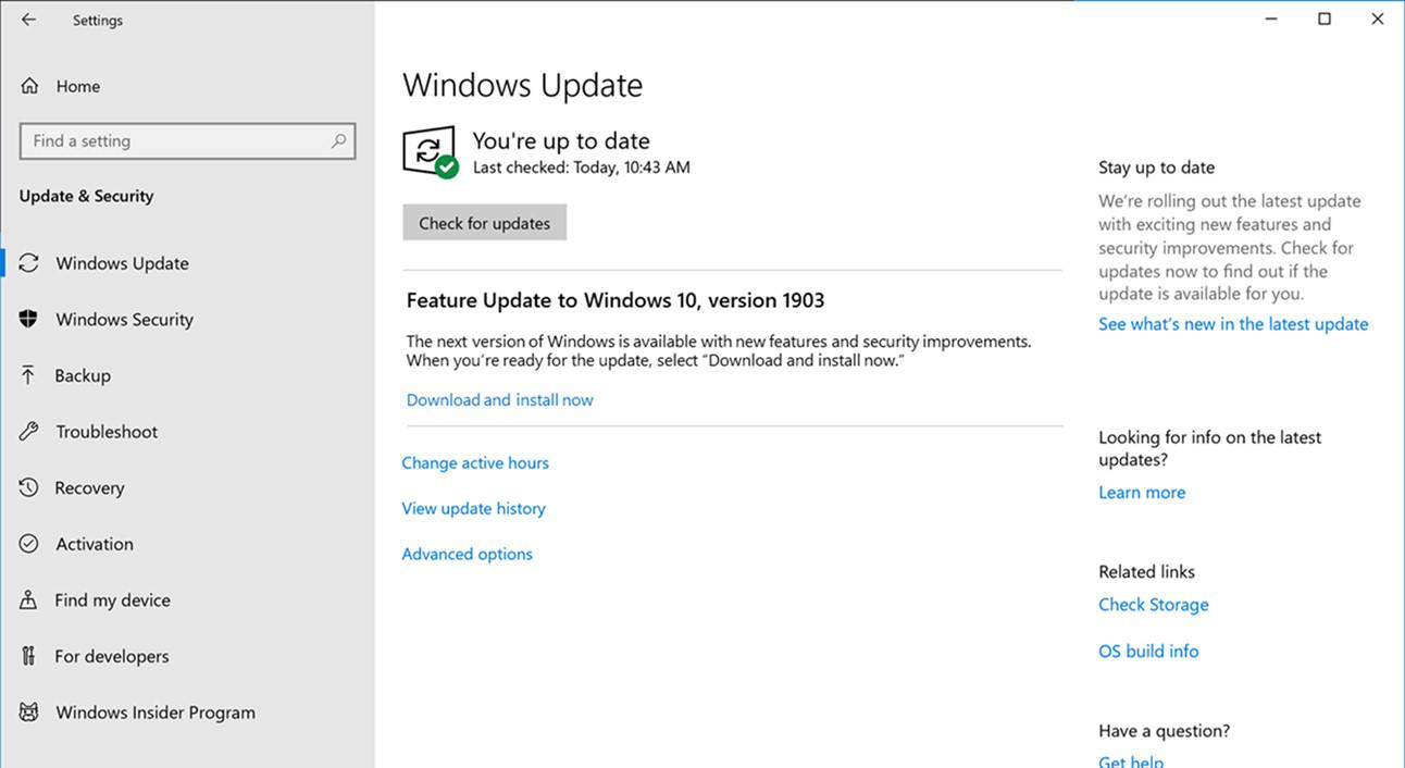 Windows 10 May 2019 Update RTM kiedy premiera 1903 aktualizacja Windows Insider