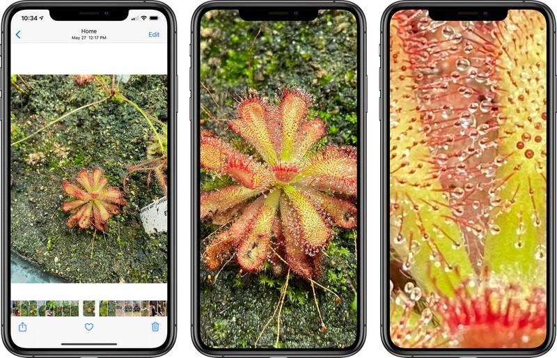 iOS 14 beta nowe ukryte funkcje przybliżanie podposy zdjęcia wskazówki najlepsze triki